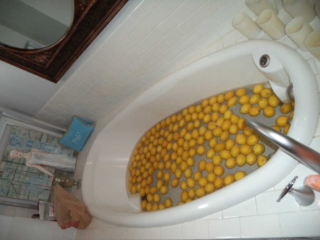 lemons in the tub