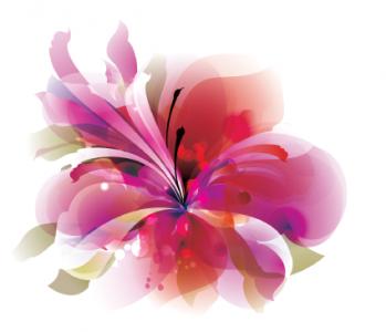 just-flower